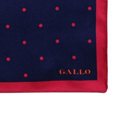 GALLO AP500588