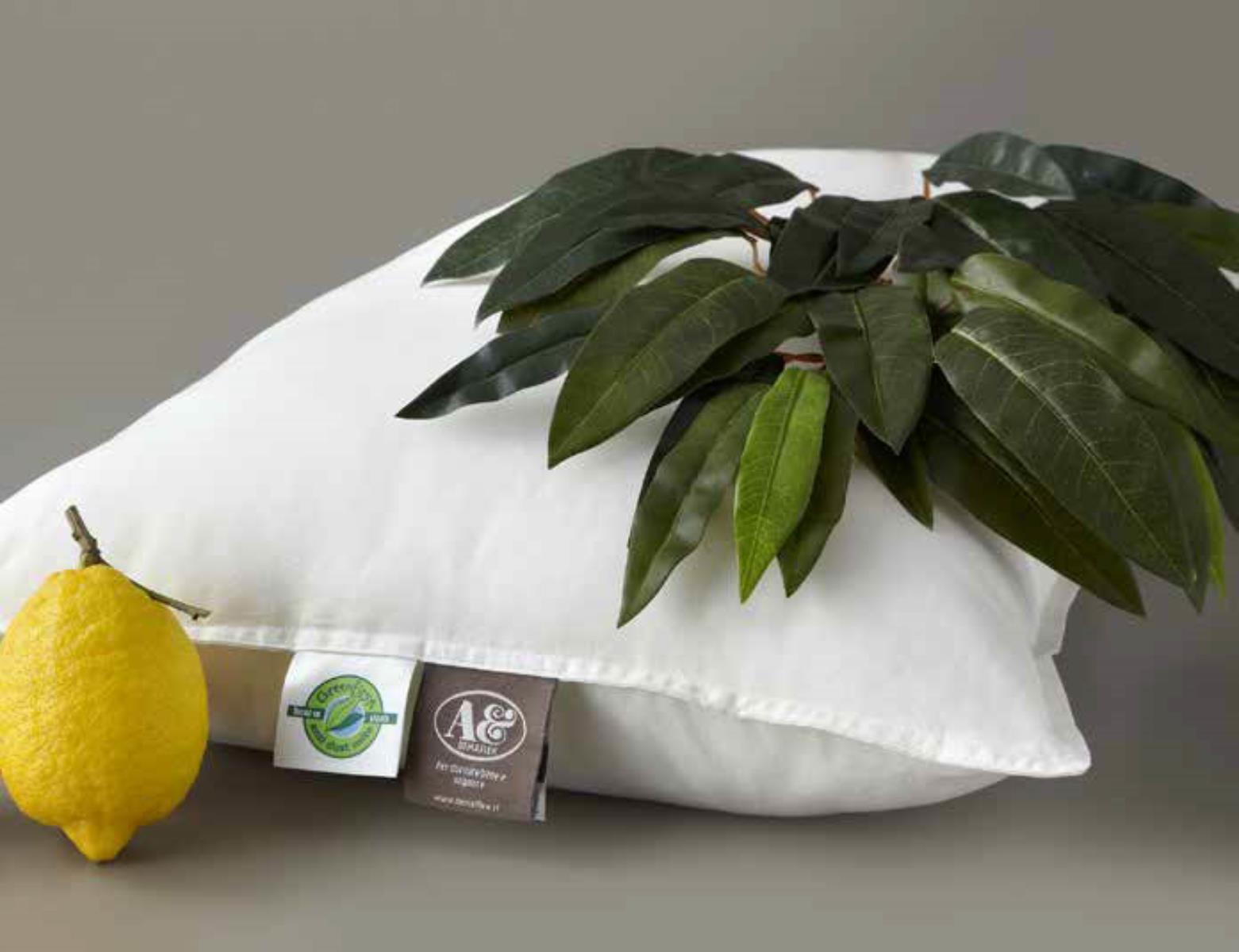 Demaflex Cuscini.Guanciale Greenfirst Antiacaro Demaflex