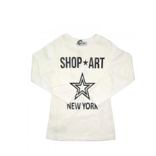 SHOP ART 011612